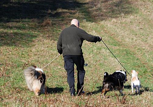Pappa med hundar