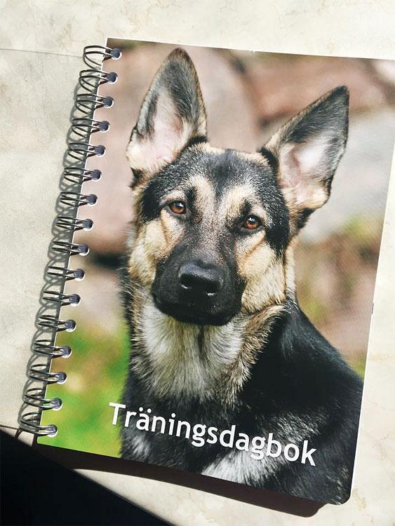 Rusas träningsdagbok